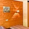 Hotel le Regis - Le Mont-Dore